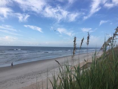 beach August 2017 (2)